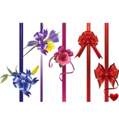 ribbons with bows and flowers vector image
