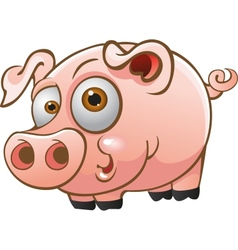 young pig vector image