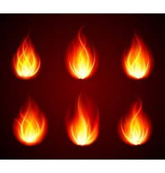 Various Flames vector image