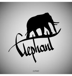 Elephant Calligraphic elements vector image vector image