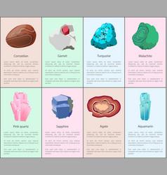 Aquamarine agate sapphire pink quartz malachite vector