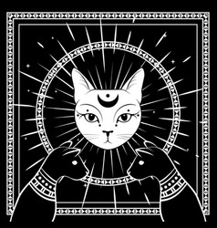 black cats cat face with moon on night sky vector image