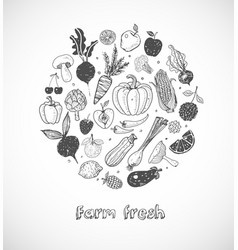 Card with doodle fruits and vegetables on white vector