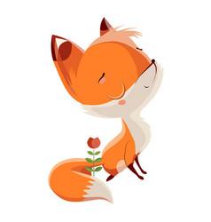 Fox brave vector