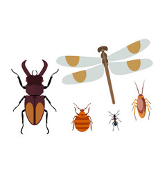Insect icon flat isolated nature flying butterfly vector