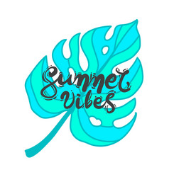Lettering quote summer vibes vector