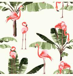 pink flamingo and exotic banana tree pattern vector image