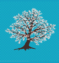 Sakura tree on blue backrop cherry blossoms vector