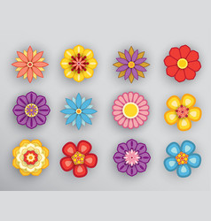 flower with shadow vector image vector image