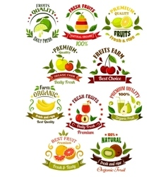 Fresh fruits retro icons for agriculture design vector image