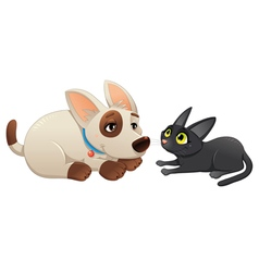 Lovely cat and dog vector image