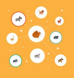 flat icons horse hippopotamus chipmunk and other vector image