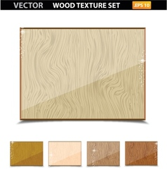 wood texture vintage vector image vector image