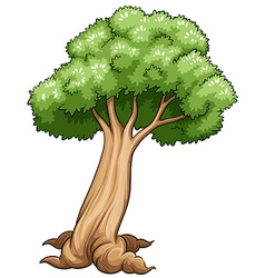 A tree vector image