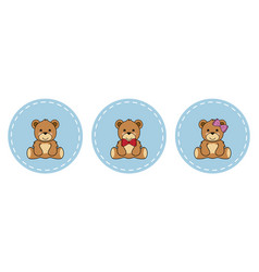 cute teddy bears vector image