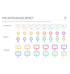 Entourage effect with structural formulas vector