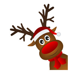 Funny cartoon christmas reindeer vector