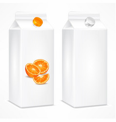 packing template for orange vector image