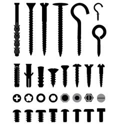 screws vector image vector image
