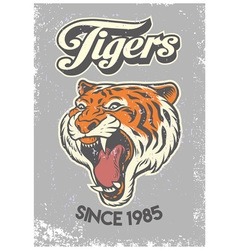 Vintage grunge style of college poster of tiger vector