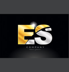 combination letter es e s alphabet with gold vector image