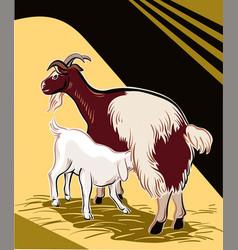 Goat suckling her kid vector