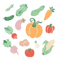 hand drawn colorful doodle vegetables vector image