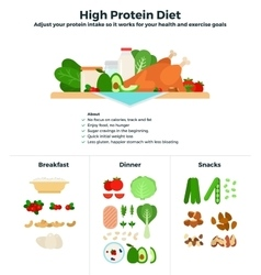 High protein diet vector image