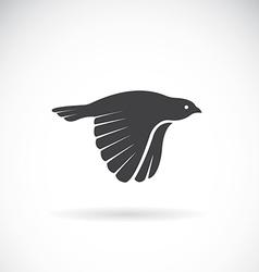 image an bird icon vector image