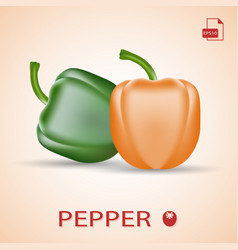 Set of two fresh sweet peppers green and orange vector