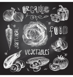 Vegetables sketch set chalkboard vector image