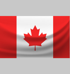 Waving national flag of canada vector