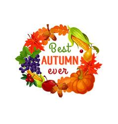 autumn leaf harvest vegetable and fruit poster vector image