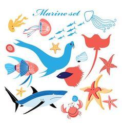marine set of beautiful fish in the sea vector image vector image