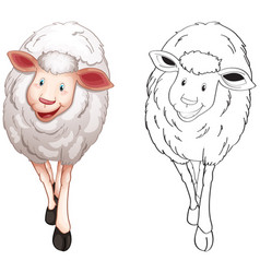 animal outline for cute sheep vector image