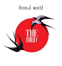 Animal world bird martin red sun background ve vector