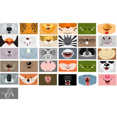 Animals mouth set on white background fase vector
