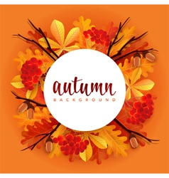 Autumn border with oak and chestnut leaves vector image