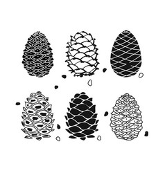 Cedar cone set sketch for your design vector