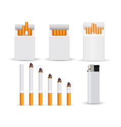 cigarettes 3d vector image