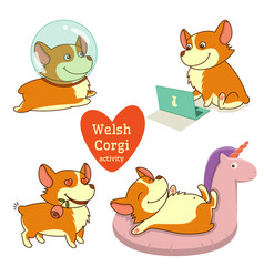 Cute welsh corgi set in different poses funny vector