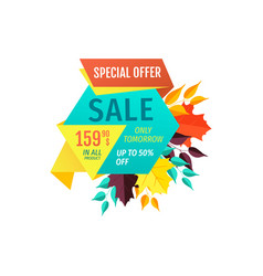 Sale special offer promo emblem with fall leaves vector