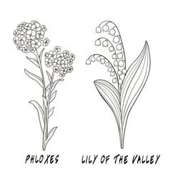 Set flowers hand draw vector