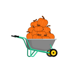 wheelbarrow and pumpkin vegetables in garden vector image