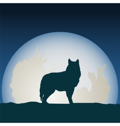 wolf in front moon vector image