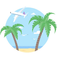 beach with palm and airplane vector image