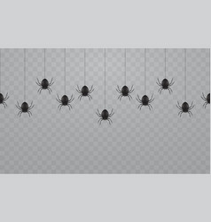 black hanging spiders on a transparent background vector image