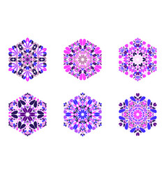 Geometrical ornate colorful floral hexagon vector