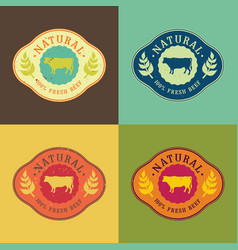 Natural fresh beef food set vector
