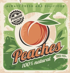 Peaches vintage poster template vector